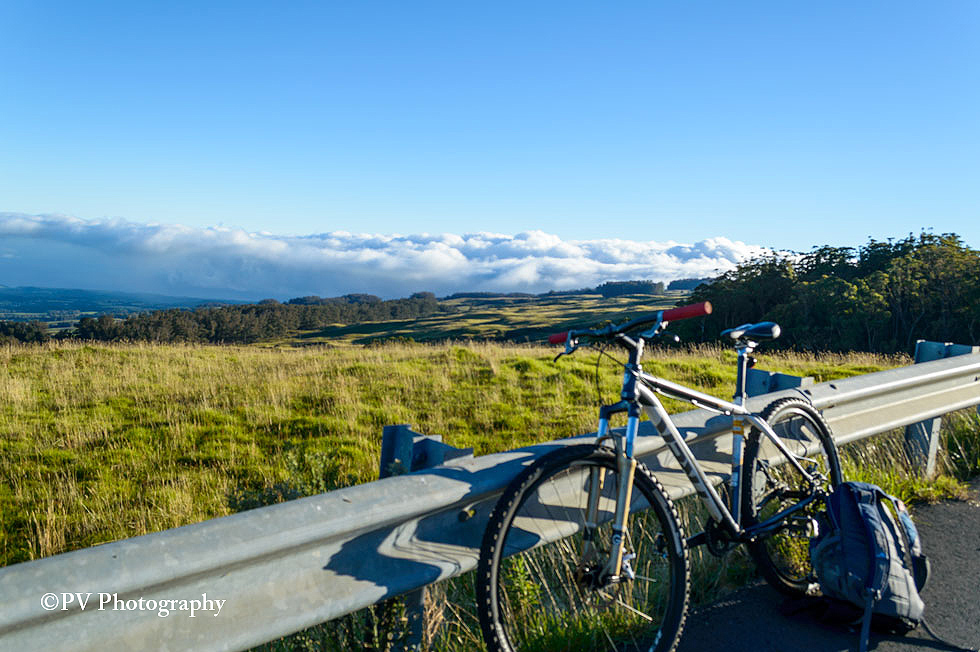 Explore the Beauty of Maui Through a Downhill Bike Tour of Upcountry