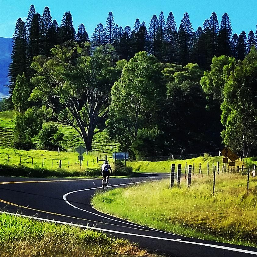 Haleakala Bike Tour
