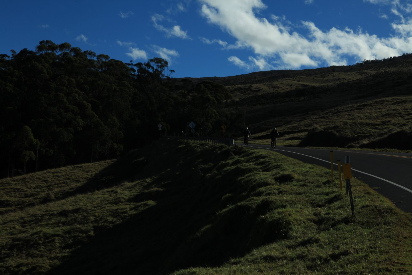 Experience a Multitude of Microclimates on the Maui Sunrise Volcano Tour