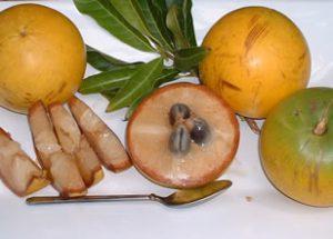 abiu-segments