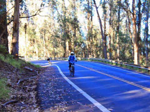 bike-tour-maui