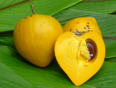 Exotic Fruits In Maui You've Never Heard Of