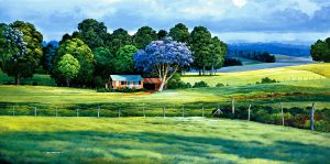 upcountry-jacaranda